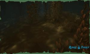 Dinger Key Underwater