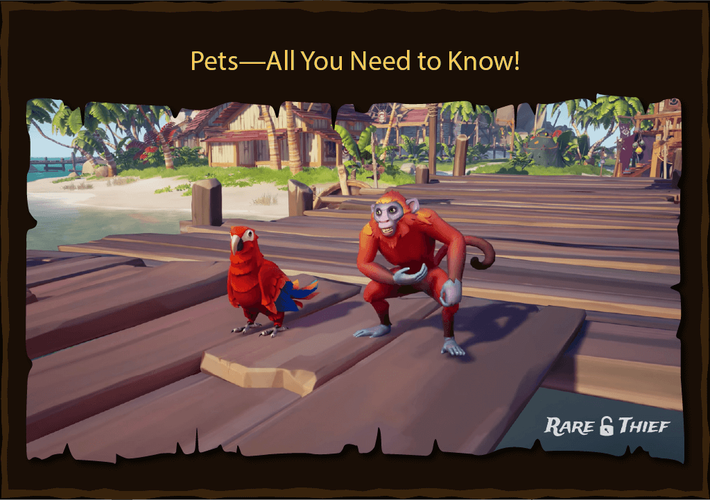 Rare Thief Article: Pets—All You Need to Know