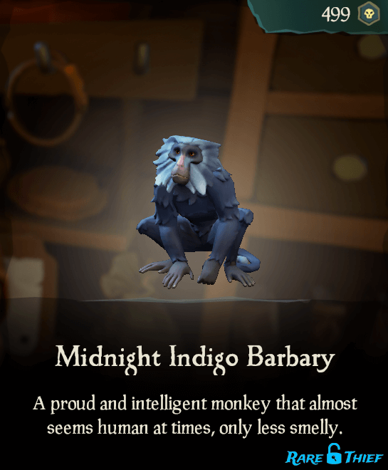 Midnight Indigo Barbary
