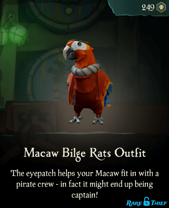 Macaw Bilge Rats Outfit