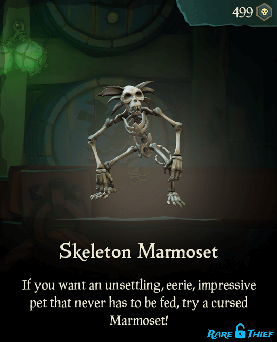 Skeleton Marmoset