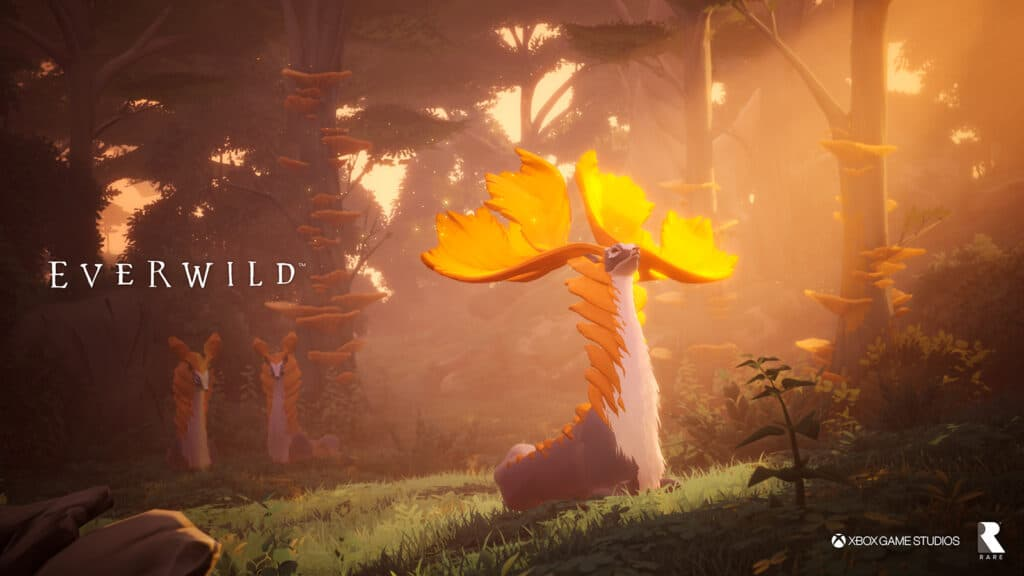 everwild_x019_2-1024x576.jpg