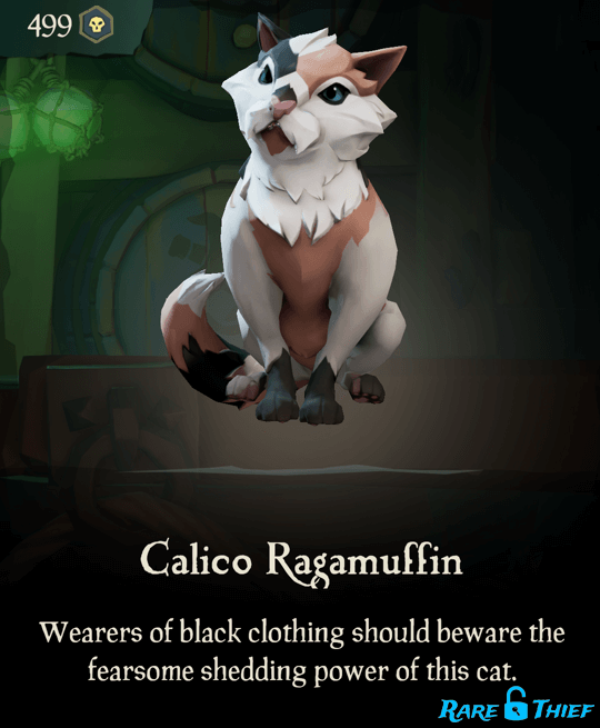 Calico Ragamuffin