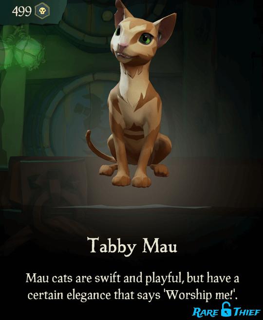 Tabby Mau