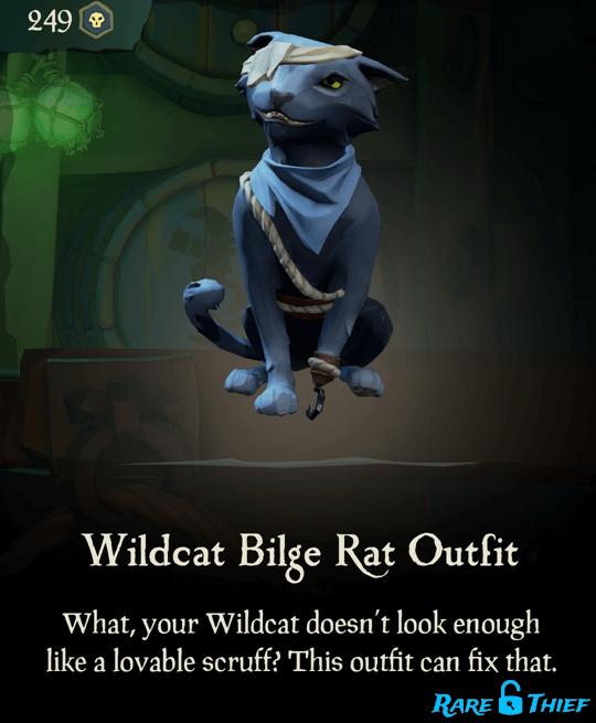 Wildcat Bilge Rat Outfit