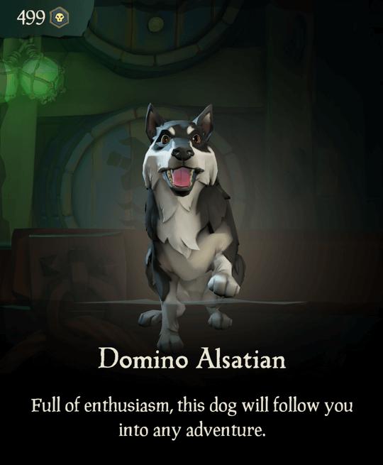 Domino Alsatian