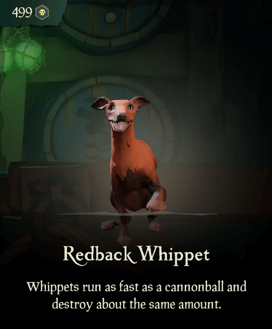 Redback Whippet